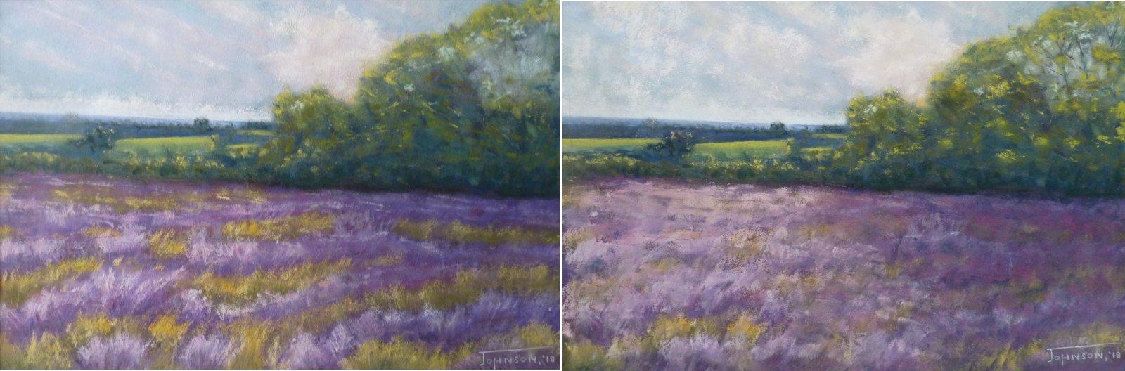 Lavender Field Improvements